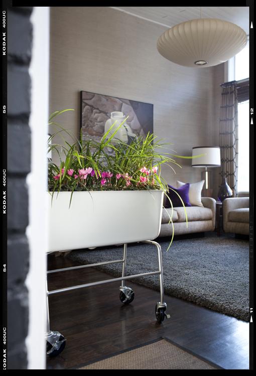 Живая клумба в интерьере гостиной