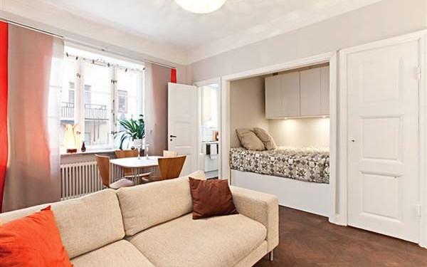Уютная однокомнатная квартира (12)