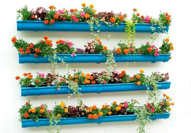 цветы на стене балкона