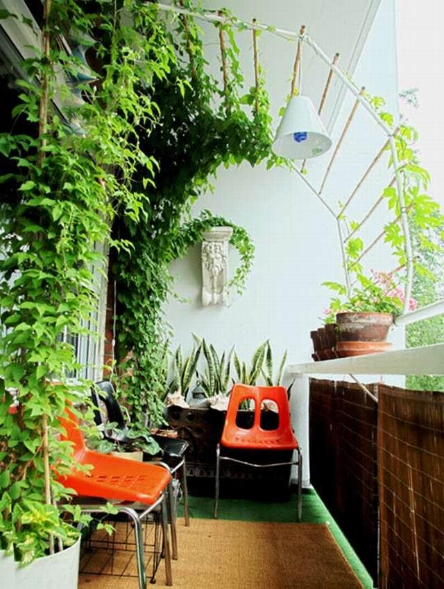 интересный пример озеленения балкона