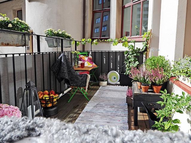 декорирование балкона цветами и растениями
