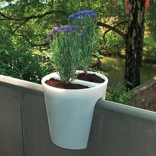 озеленение балкона фото 1