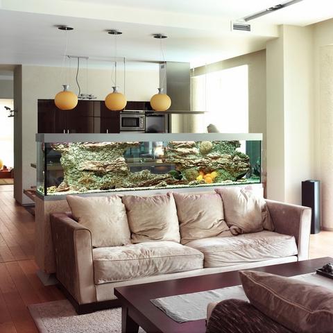 кухня совмещенная с гостиной зонирование
