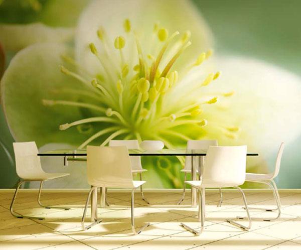фотообои с цветком  на кухне