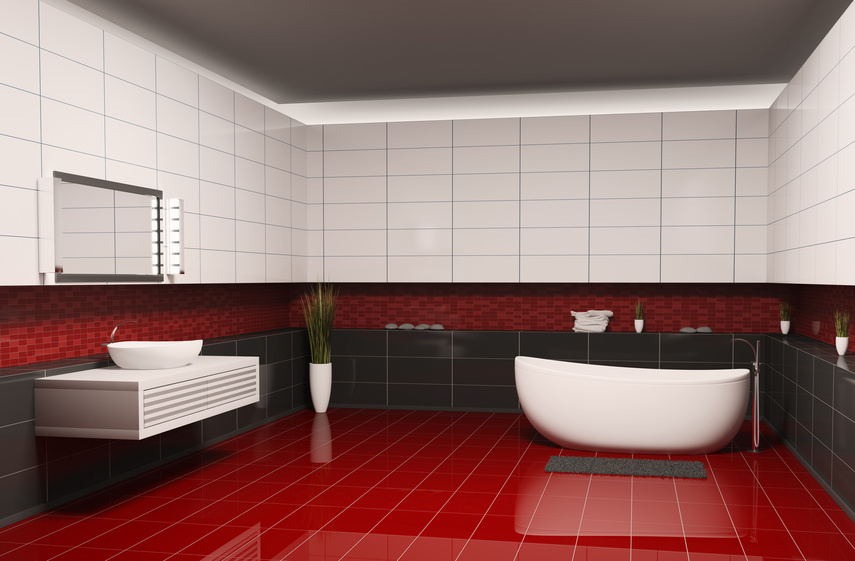 Bathroom with black white walls and red floor interior 3d