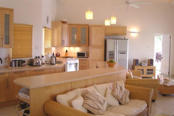 дизайн кухни совмещенной с гостиной фото 8
