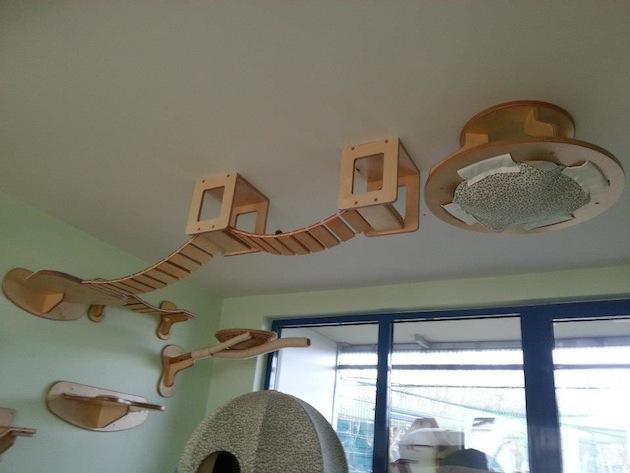 Интерьер для кошек от GoldPaw